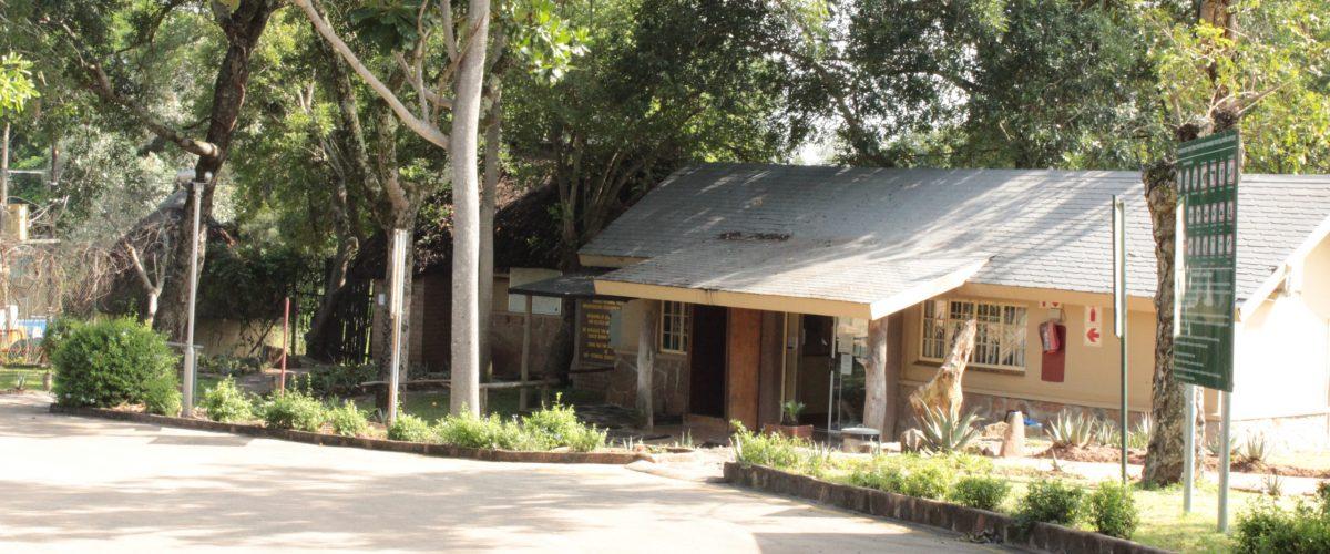 Numbi Gate Kruger Park Safaria