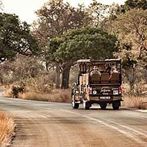 Overnight-Kruger-Park-Safaris
