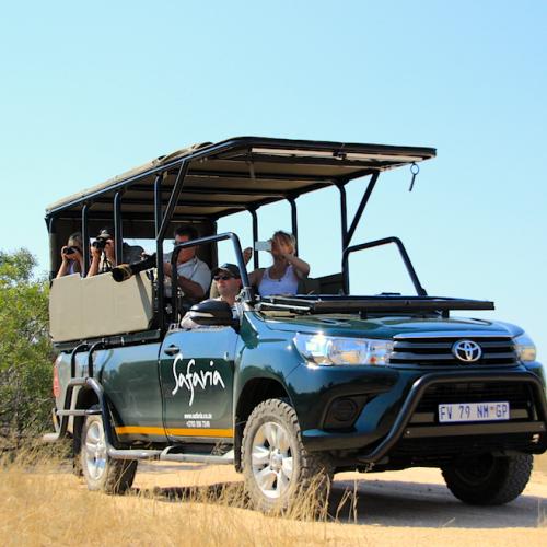 full-day-safari-kruger-park